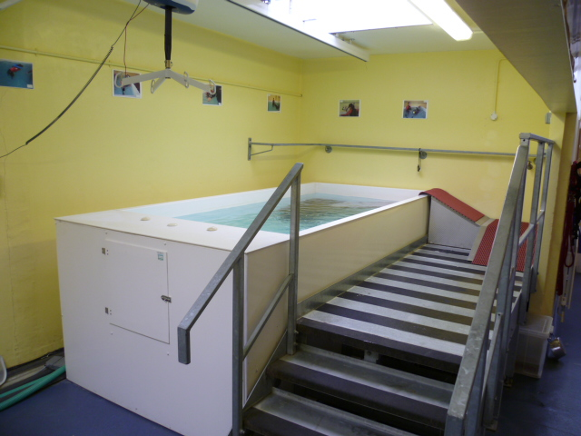 Unknown Hydrotherapy unit