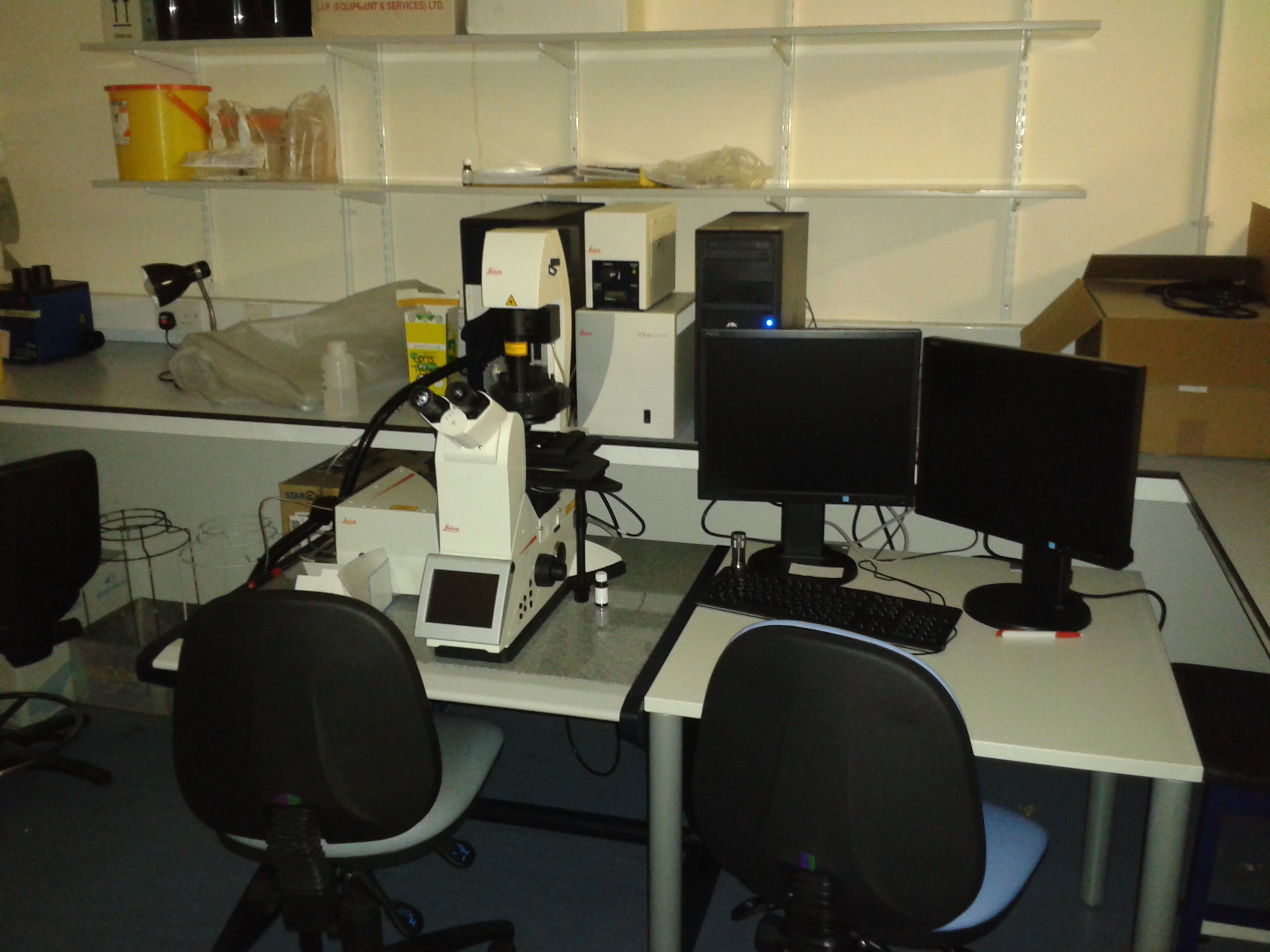 Confocal 10 laser scanning microscope